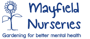 Mayfield Nurseries Roots logo